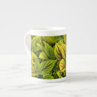 Coleus Tea Cup