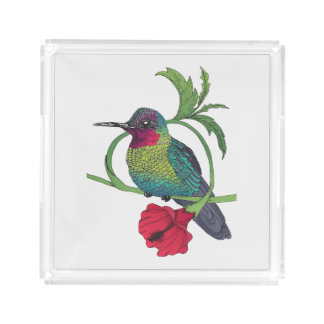 Colibri Bird Illustration Acrylic Tray