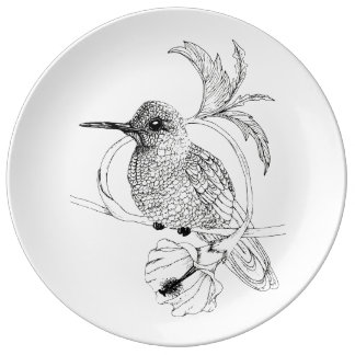 Colibri Bird Illustration Porcelain Plate
