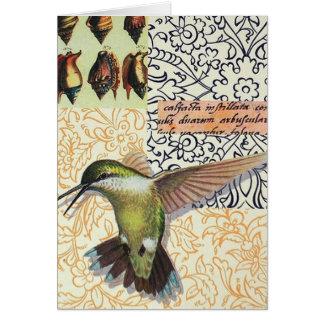 Colibri Card