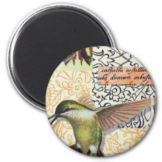 Colibri Magnet