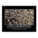 Collaboration Improves Your Chance of Success Postcard