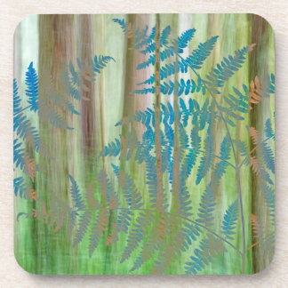 Collage of Bracken Ferns and Forest   Seabeck, WA Coaster