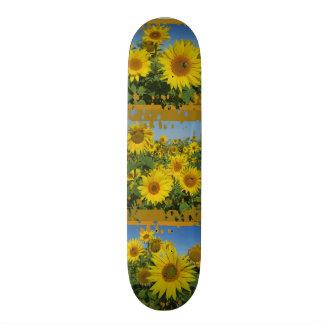 collage of sunflower in blue sky summer skatboard 19.7 cm skateboard deck