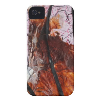 Collage  Products iPhone 4 Case