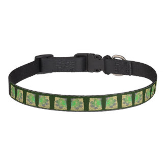 Collar for dogs, paw, Celtic knot, green