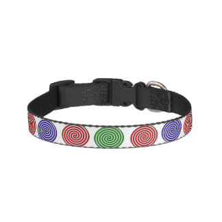 Collar of dog - decoration in spiral coloured