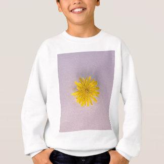 Collection daisies by Babylandia Sweatshirt