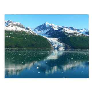 College Fjord I Scenic Alaska Cruising Postcard