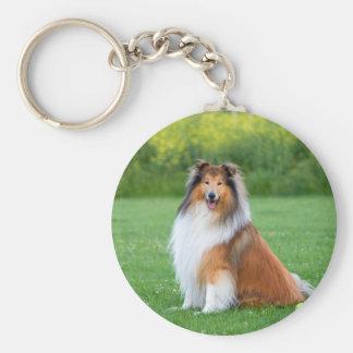 Collie dog beautiful rough collie photo keychain