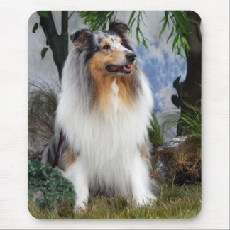 Collie dog blue merle mousepad, gift idea mouse pad