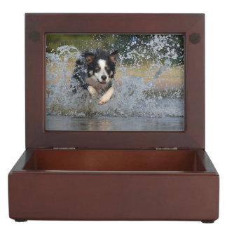 Collie Dog Keepsake Boxes