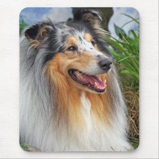 collie dog mousepad, gift idea mouse pad