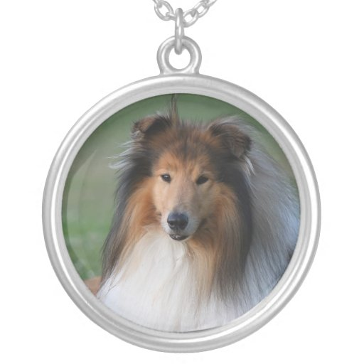 Collie dog necklace, gift idea