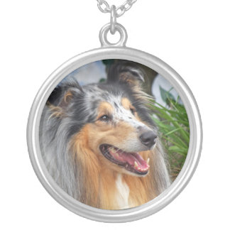 Collie dog necklace, gift idea round pendant necklace