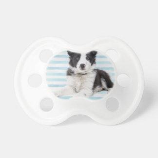Collie Dog Pup Dummy