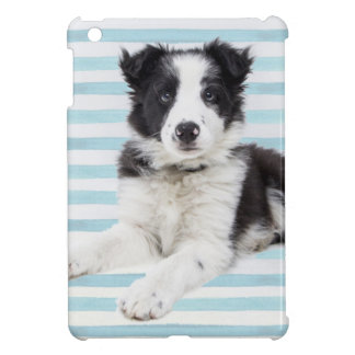 Collie Dog Pup iPad Mini Case