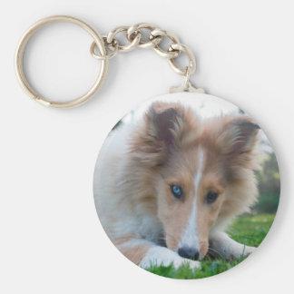Collie puppy dog cute rough collie face photo keychain