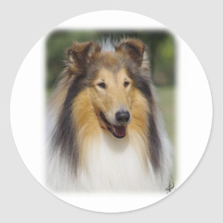 Collie Roiugh AA011D-031 Classic Round Sticker