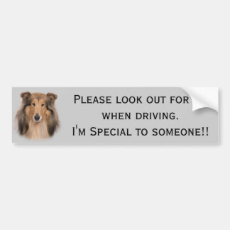 Collie Rough Bumper Sticker
