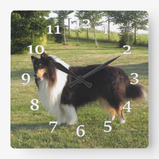 Collie Square Wall Clock