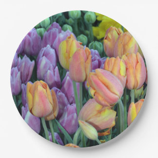 Coloful bunches of tulips paper plate