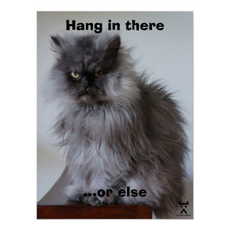 Colonel Meow Hang In There Poster