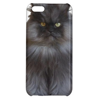 Colonel Meow Phone Case Cover For iPhone 5C