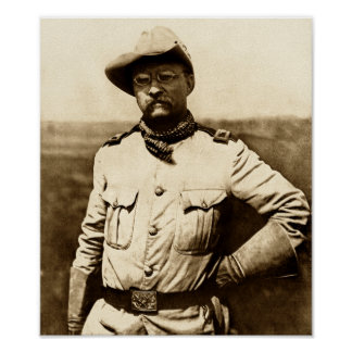 Colonel Theodore Roosevelt Poster
