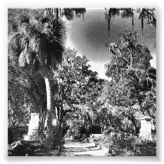 Colonial Cemetery Photo Print