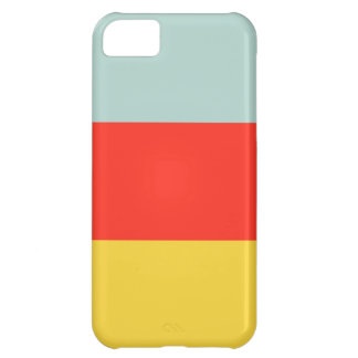 Color Block iPhone 5 Case