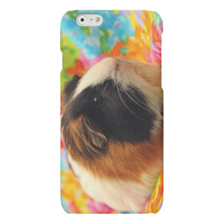 Color Burst Guinea Pig Cell Phone Case
