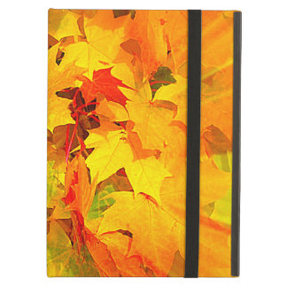Color Burst of Fall Leaves Autumn Colors iPad Air Cases