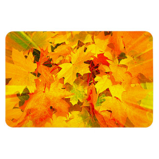 Color Burst of Fall Leaves Autumn Colors Flexible Magnets