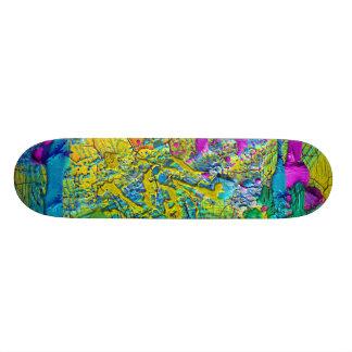color custom skate board