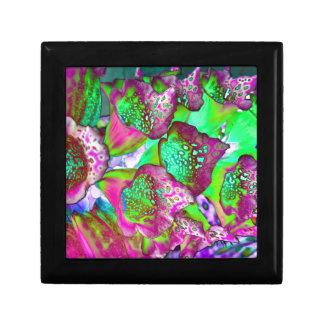 color dream gift box