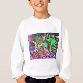 color dream sweatshirt