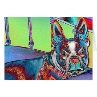 Color My World with Boston Terriers Greeting Card