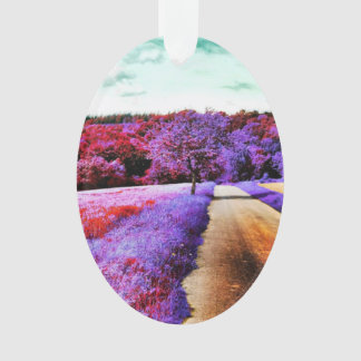 Color nature ornament