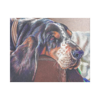 color pencil drawing of basset hound dog on canvas canvas print