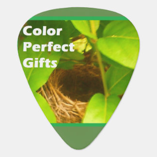 Color Perfect Gifts Promotional Guitar Pick