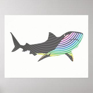 Color Shark Swirl Poster