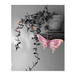 Color Splash Butterfly Still Life Photograph Acrylic Wall Art