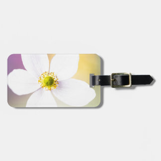 Color Wheel Luggage Tag