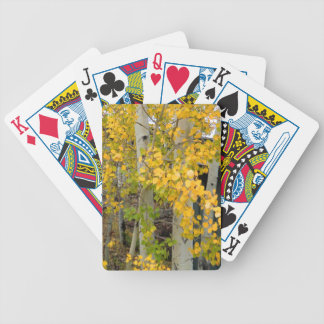 Colorado Aspens Bicycle Playing Cards