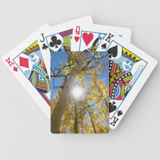 Colorado Autumn Bicycle Playing Cards