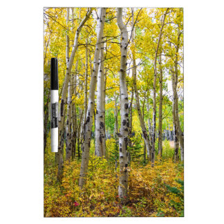 Colorado Backcountry Forest Dry Erase Board