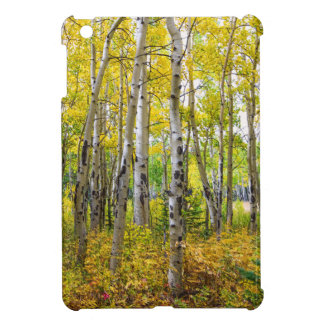 Colorado Backcountry Forest iPad Mini Covers