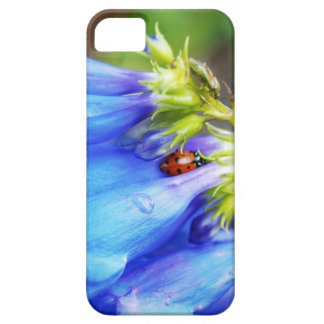 Colorado Beauty iPhone 5 Covers
