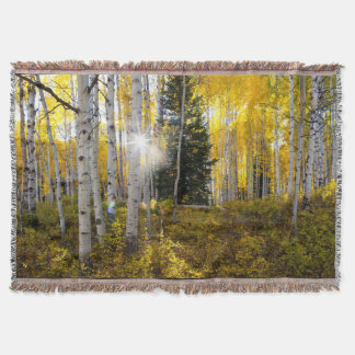 Colorado Birch Trees Throw Blanket